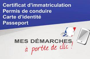 document carte grise collection